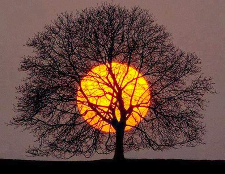 بالصور صور عجائب , من اقوى الصور المذهله 1722 11