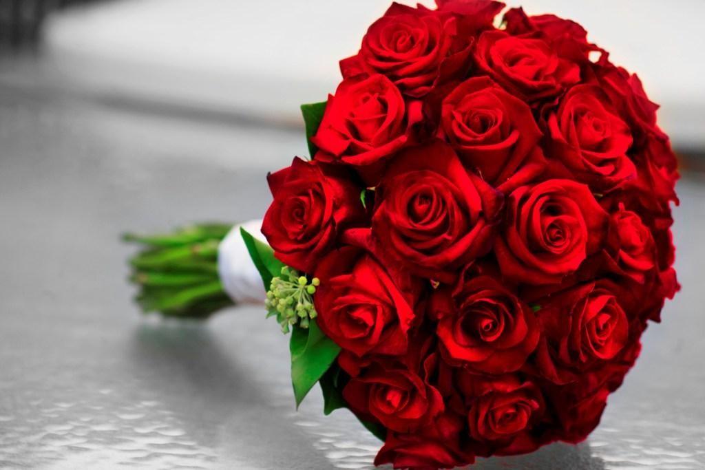 بالصور اجمل صور ورد , ازهار وورود تجنن 3472 7