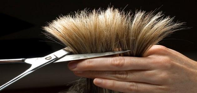 بالصور قص الشعر في الحلم , تفسير احلام 3607 1
