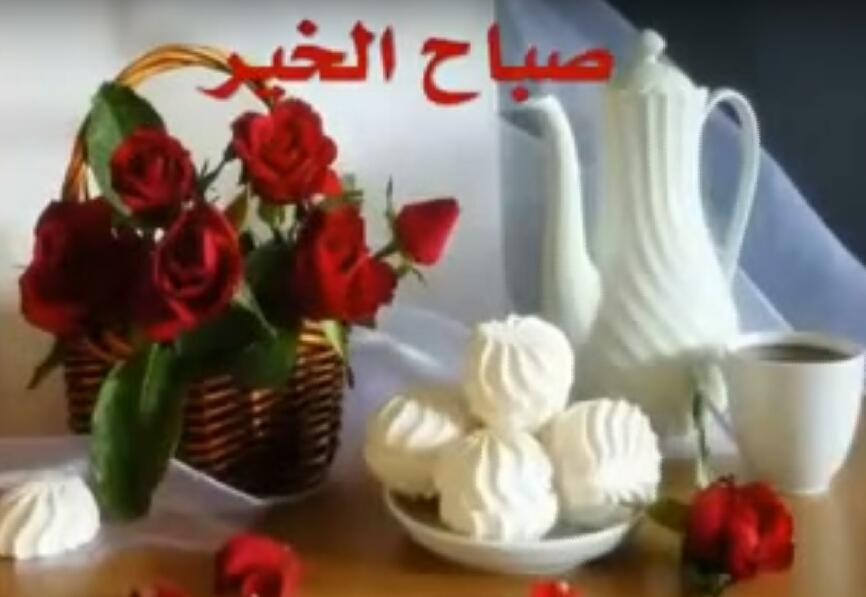 بالصور فيديو صباح الخير , خيرات ومحبة تتبادل فى الصباح 1367