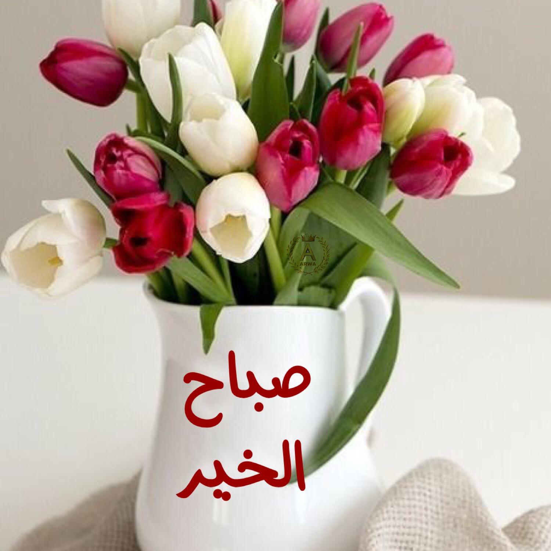 صورة صور ورد صباح الخير , بطاقات وردية لاجمل صباح