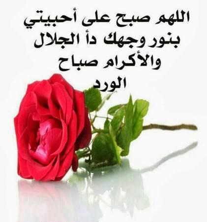 بالصور رسائل صباحية للحبيب , اجمل الماسيدجات الرومانسية في الصباح 3486 1