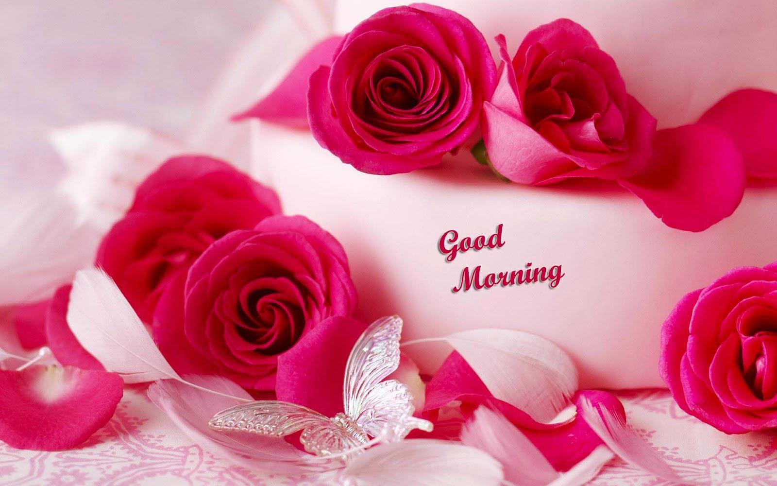 بالصور رسائل صباحية للحبيب , اجمل الماسيدجات الرومانسية في الصباح 3486 6