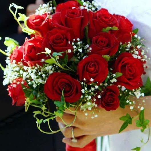 بالصور احلى صور ورد , الورود رمز الحب والمشاعر 3597