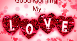 بالصور كلمات صباح الخير للحبيب , رسايل صور للصباح 3308 3 310x165