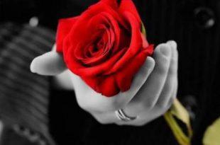 صوره اجمل ماقيل في الحب , اروع كلمات حب مصورة