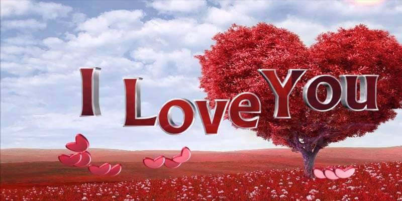 بالصور رسائل بحبك , كلمات حلوة للحبيب 3669 10
