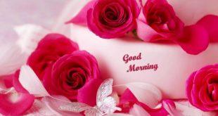 بالصور صباح رومانسي , اجمل صور رومانسية للصباح للاحباب 3567 310x165