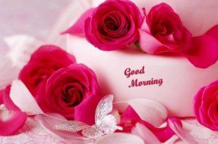 بالصور صباح رومانسي , اجمل صور رومانسية للصباح للاحباب 3567 310x205