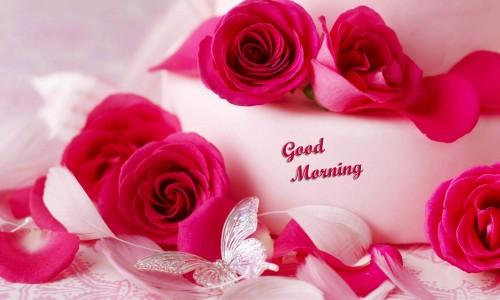 صور صباح رومانسي , اجمل صور رومانسية للصباح للاحباب