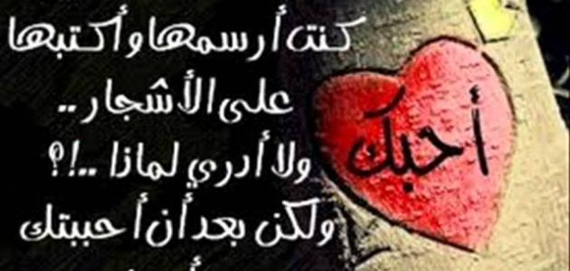 صورة عبارات حب وعشق , كلمات لكل الاحباب والعشاق