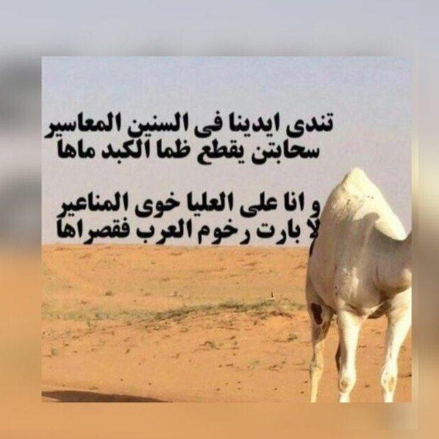 صورة قصيدة مدح في الخوي , كلمات جميلة عن الاخوات