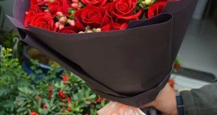 صور صور ورود , ارق مافي الحب الورود