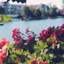 صورة صور جميلة , الحياه لا تحلو غير بالصور الحلوه