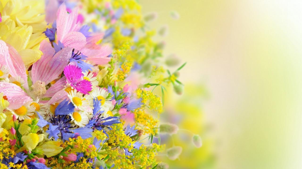صورة صور ورد رومانسيه , اجمل الوانات الزهور
