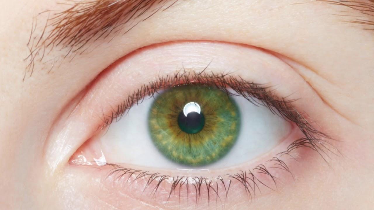 صورة صور عيون خضر , من اجمل الوانات العيون