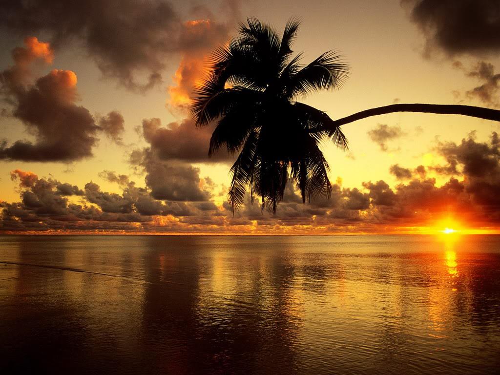 صورة اجمل صور الطبيعة , الطبيعة احلى مكان للاسترخاء