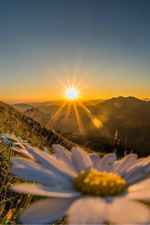 صورة صور مناظر طبيعيه , الطبيعة سر جمال الحياة