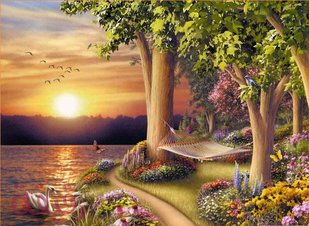 صورة صور مناظر جميله , الطبيعة كنز جميل