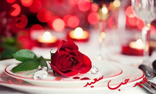 صورة صور ورد احمر لعيد الحب , ارق هدية فى اى مناسبة
