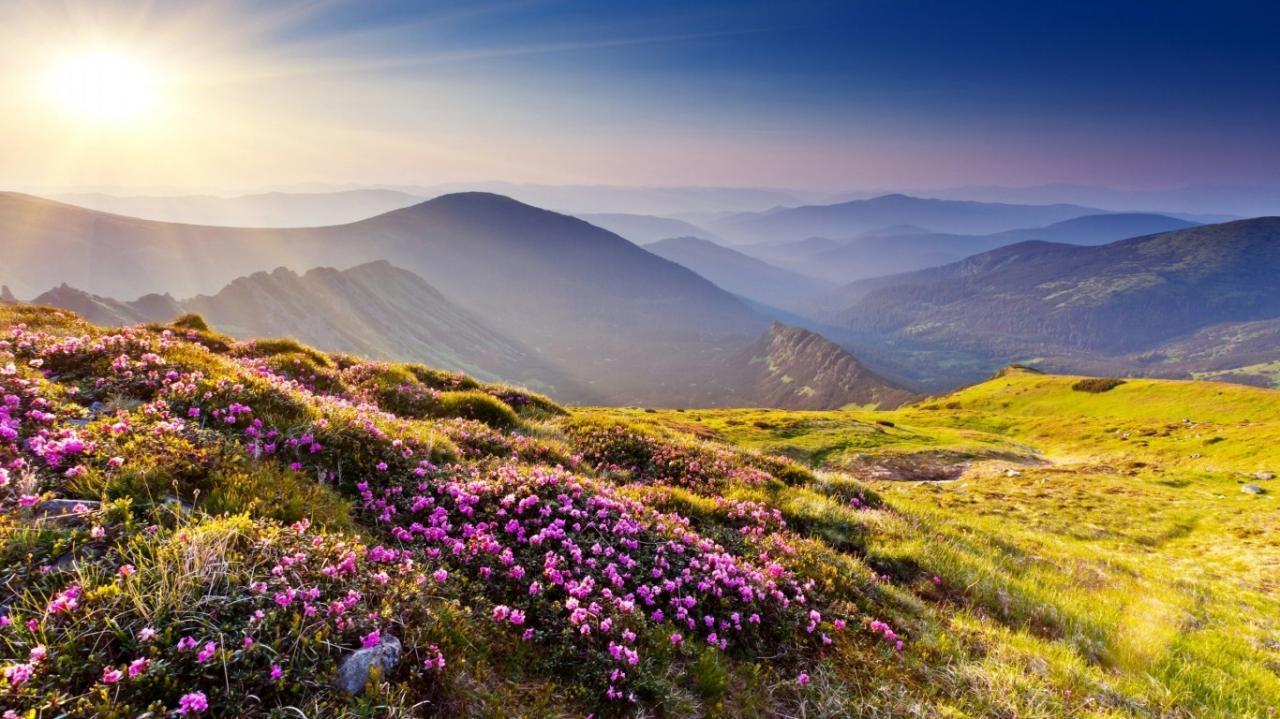 صور صور الطبيعة , اجمل صور لطبيعة خلابة