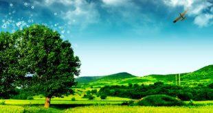 صور الطبيعة , اجمل صور لطبيعة خلابة