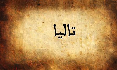 صورة اسماء بنات اجنبية مسلمة , تعرف معانا على اسماء بنات اجنبية 8879 3