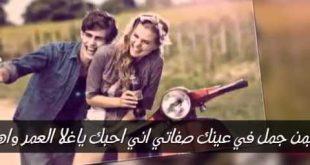 صور ياعيد عمري كلمات , كلمات اغنية يا عيد عمري