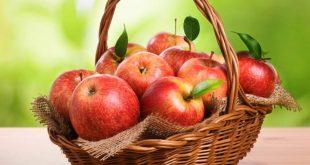 صور تفسير التفاح في المنام للامام الصادق , ما هو تفسير رؤية التفاح في المنام للامام الصادق