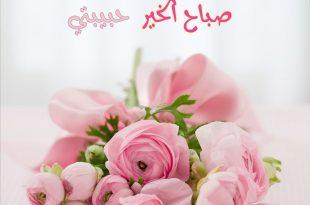 صورة احلى صباح الخير , اجمل الكلام صباح الخير