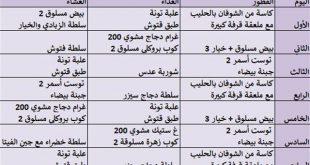 صورة وصفات الرجيم لتخلص من الكرش ,رجيم عذاري