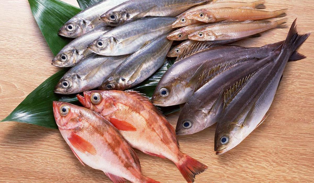 صورة رؤية السمك في المنام للحامل , تفسير حلم السمك فى المنام 9386